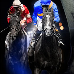 Online Horse Betting Canada Real Money